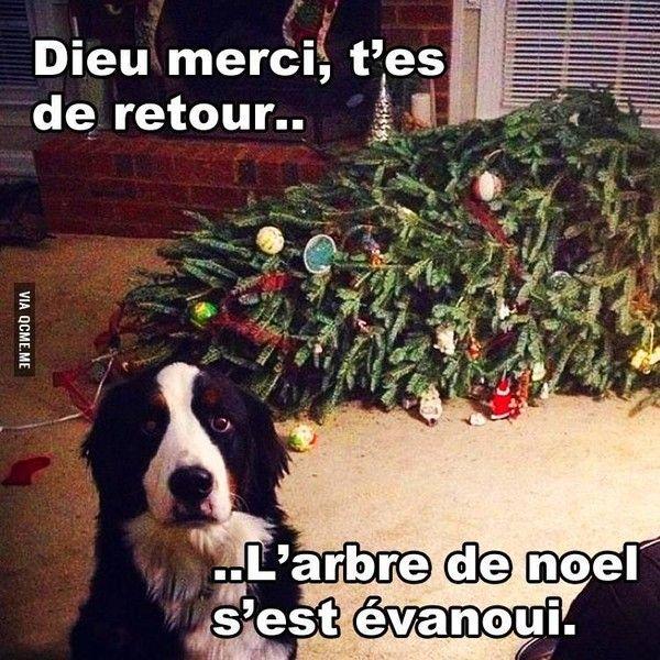 Boum boum - Sapin de noel humour ...